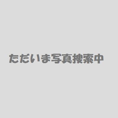 my2901.jpg